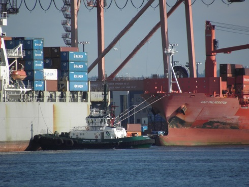 Foss Pacific Star awaits the signal to ease Cosco Antwerp off the pier, ...