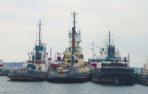 Hamilton Island Barge Timetable